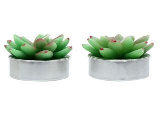 Seet 2 Velas Cactus 1 Alaniz Home 16 x 8 x 4.5 cm,,hi-res