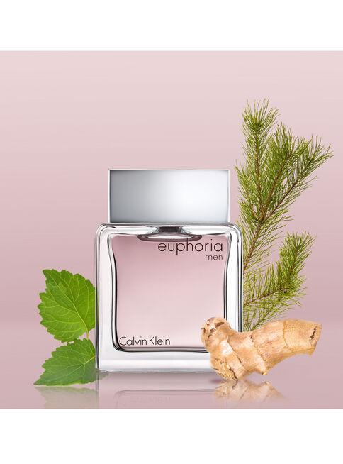 Perfume%20Calvin%20Klein%20Euphoria%20Men%20EDT%20For%20Him%20100%20ml%2C%2Chi-res