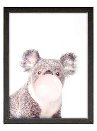 Cuadro Vidrio Koala 60 x 80 cm Home Republic,,hi-res