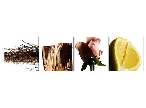 Perfume%20Yves%20Saint%20Laurent%20L%E2%80%99Homme%20EDT%2040%20ml%2C%2Chi-res