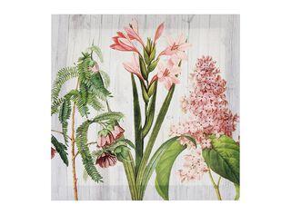 Canvas Botánico 28 x 28 cm Attimo,Rosado,hi-res
