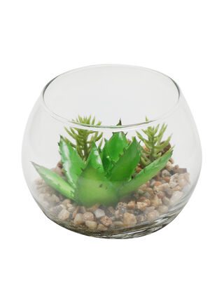 Planta Base Vidrio Cemento Attimo 10 x 10 x 11.5 cm,,hi-res