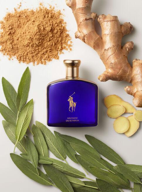 Perfume%20Ralph%20Lauren%20Polo%20Blue%20Gold%20Blend%20Hombre%20EDP%20125%20ml%2C%2Chi-res