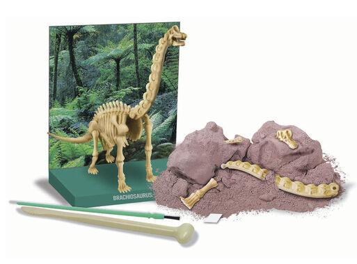 Excava%20Braquiosaurio%204M%2C%2Chi-res