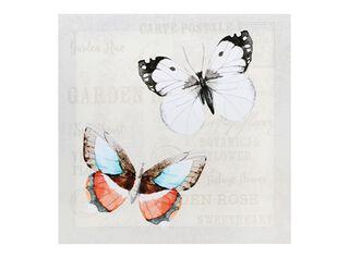 Canvas Mariposas 40 x 40 cm Attimo,,hi-res