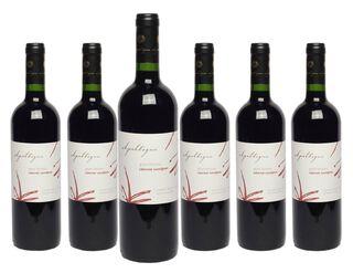 Pack 6 Vinos Apaltagua Gran Verano Cabernet Sauvignon 750 cc 14°,,hi-res