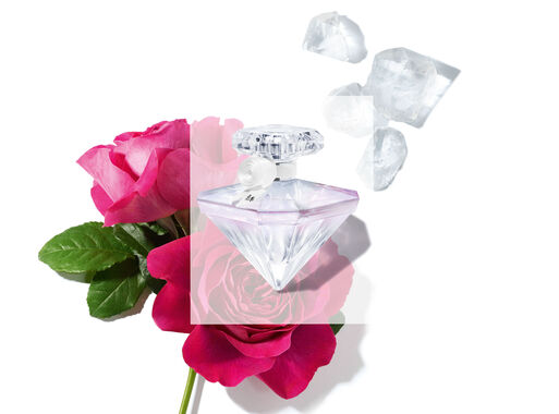 Perfume%20Lanc%C3%B4me%20La%20Nuit%20Tr%C3%A9sor%20Musc%20Diamand%20Mujer%20EDP%2050%20ml%2C%2Chi-res
