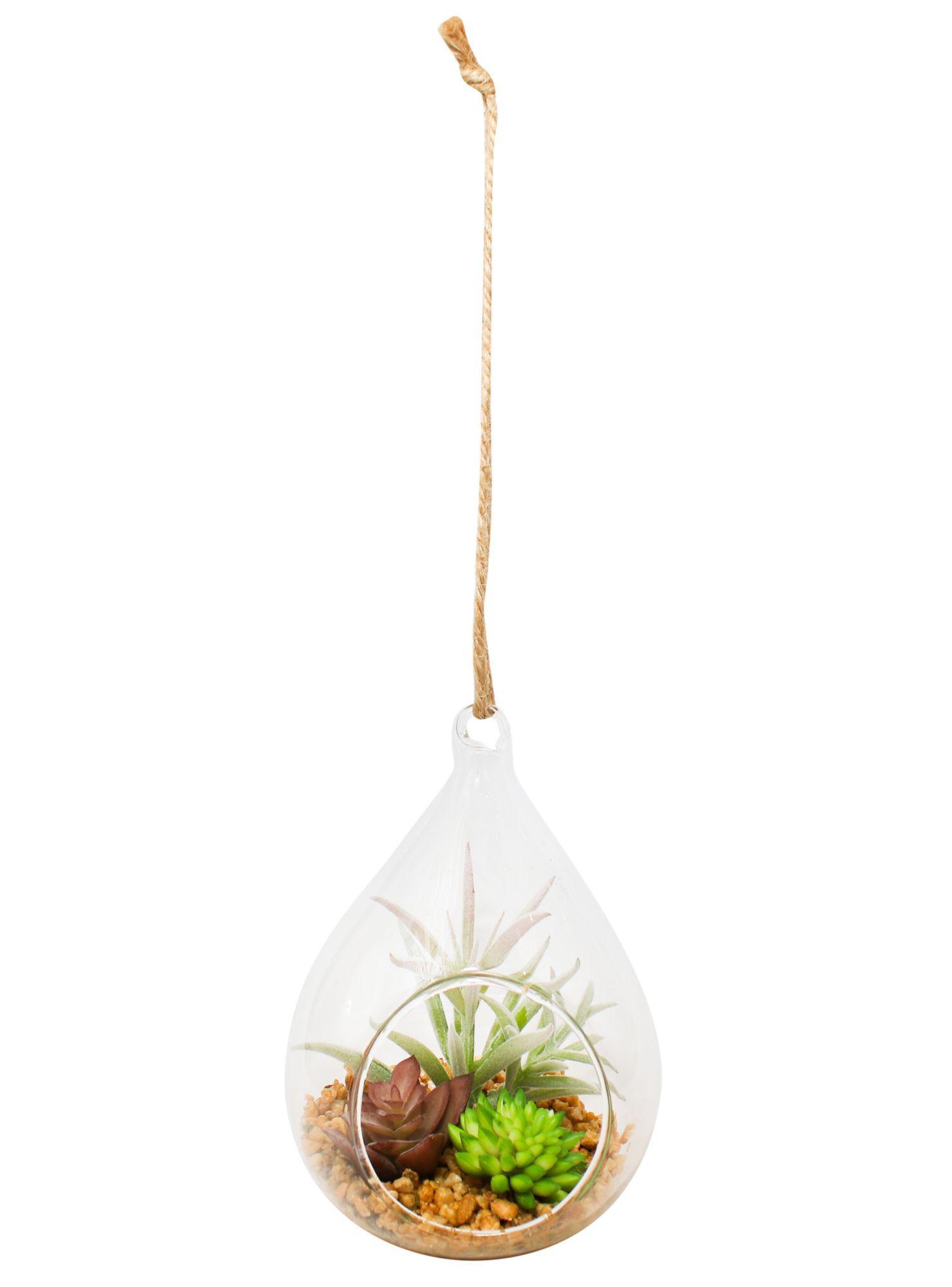fb14e32e4 Terrario Suculenta Colgante 10x8x14cm Alaniz Home en Flores y ...