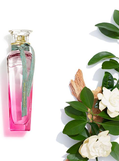 Perfume%20Adolfo%20Dom%C3%ADnguez%20Agua%20Fresca%20Gardenia%20Mujer%20EDT%20120%20ml%2C%2Chi-res