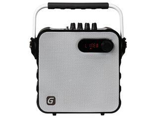 Parlante Portatil con Bluetooth y Radio FM Master Bluet Karaoke,,hi-res