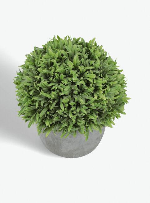 Arbusto%20Rosemary%20Alto%2017x17x21cm%20Alaniz%20Home%2C%2Chi-res