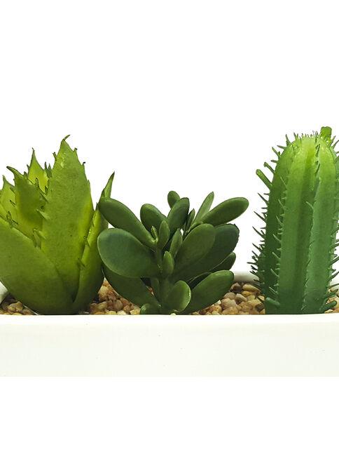 Planta%20Aloe%20y%20Cactus%2011%20cm%20Blanco%20Mallorca%2C%2Chi-res