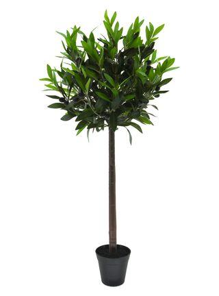 Arbol de Olivo 90 cm Alaniz Home,,hi-res