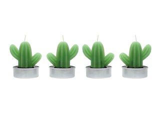 Set 4 Velas Cactus 1 Alaniz Home 9 x 9 x 6 cm,,hi-res