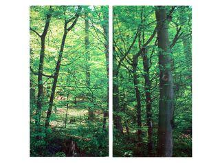 Papel Mural Tamaño A Bosque Vm Print,,hi-res