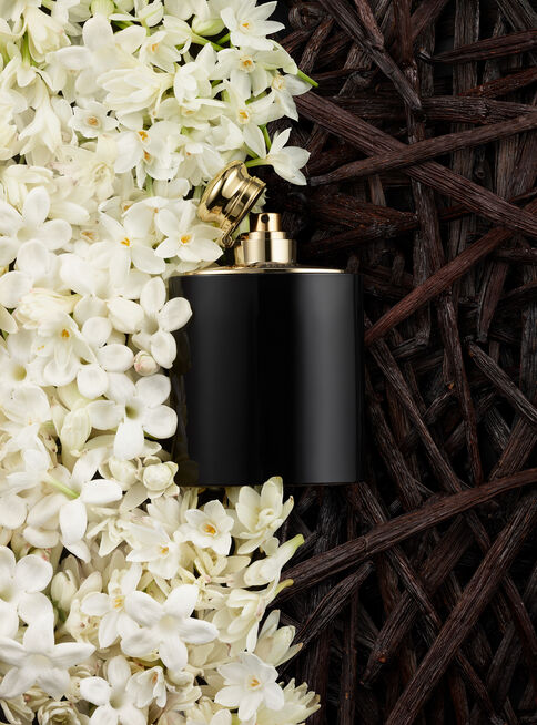 Perfume%20Ralph%20Lauren%20Intense%20Black%20Mujer%20EDP%2030%20ml%2C%2Chi-res