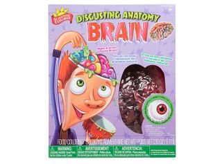 Disgusting Anatomy Brain Alex,,hi-res