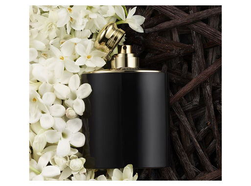 Perfume%20Ralph%20Lauren%20Intense%20Mujer%20EDP%2050%20ml%2C%2Chi-res