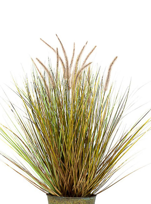 Grass%20Dogtail%20Redondo%20Caf%C3%A9%2081%20cm%20The%20Garden%2C%2Chi-res