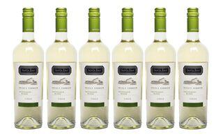 Santa Ema Select Terroir Sauvignon Blanc Caja de 6 Botellas,,hi-res