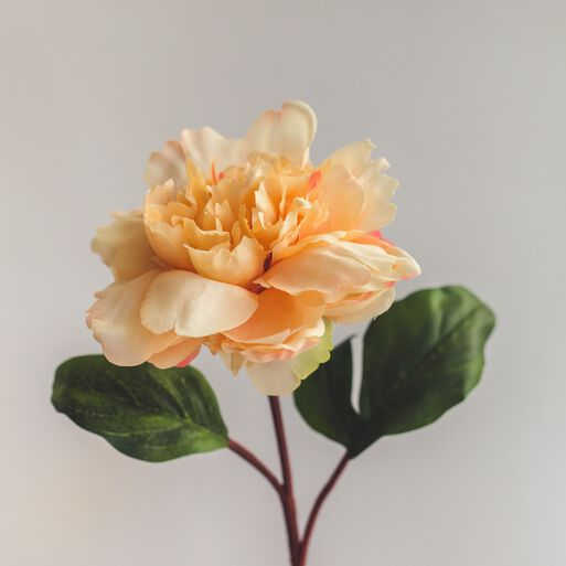 Peonia%20Damasco%20Flor%20Artificial%20by%20Le%20Bouquet%2Chi-res