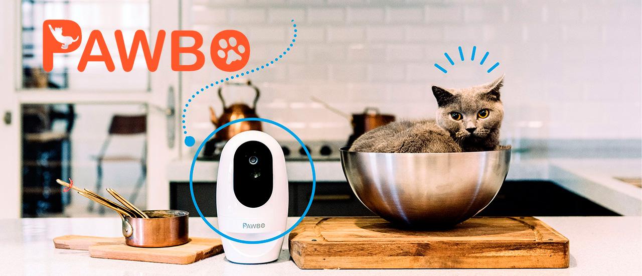 Tecnología interactiva para ti y tus mascotas