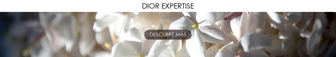 Ver todo Dior Expertise