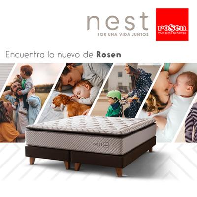 Lanzamiento Línea Nest