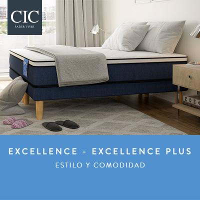 Lanzamiento Excellence CIC