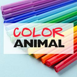 Color Animal