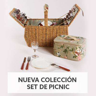 Set de picnic