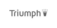 Ver todo ropa interior Triumph